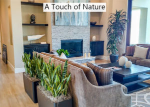 A-Touch-of-Nature